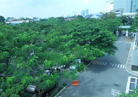 facilities_parking-5